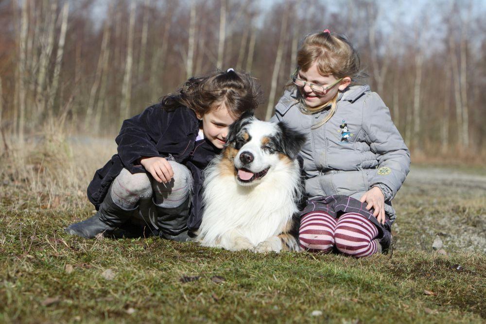 Die Begeisterung für einen Hund lässt bei Kindern schnell nach wenn es um die tägliche Arbeit geht!